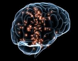 cerebro descarga